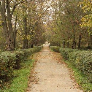 Осенний Чишмикиой